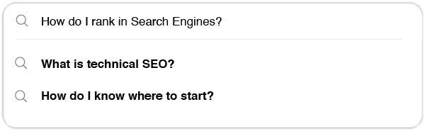 SEO Quinlan Marketing